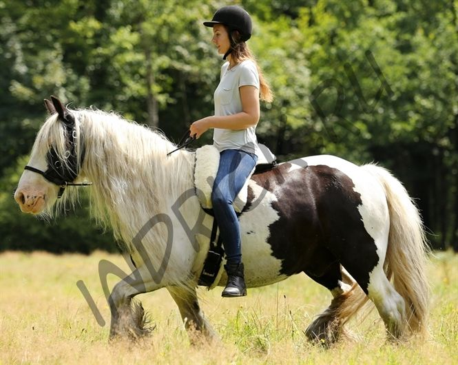 Меховой физио-пад Barefoot Fleece-Saddle Small